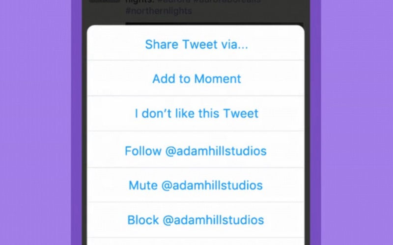 Twitter's Moments Feature Is Now Available for Mobile Users