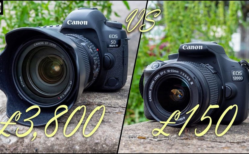 This Canon Gear Is 10x More Expensive, but Are the Results 10x Better?